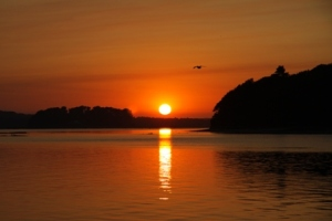 green island Poole harbour sunset.jpg web small